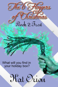 Book Cover: The 6 Floggers of Christmas: Frost