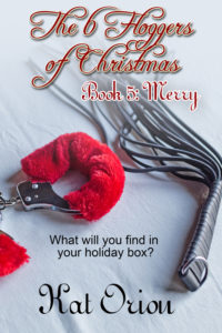 Book Cover: The 6 Floggers of Christmas: Book 5 Merry