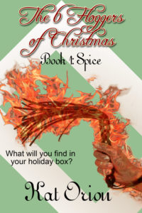 Book Cover: The 6 Floggers of Christmas: Spice